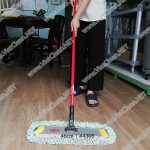 cay-day-bui-46cm(4)